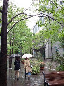 Tokyo_Marunouchi_Tokyoites_2016