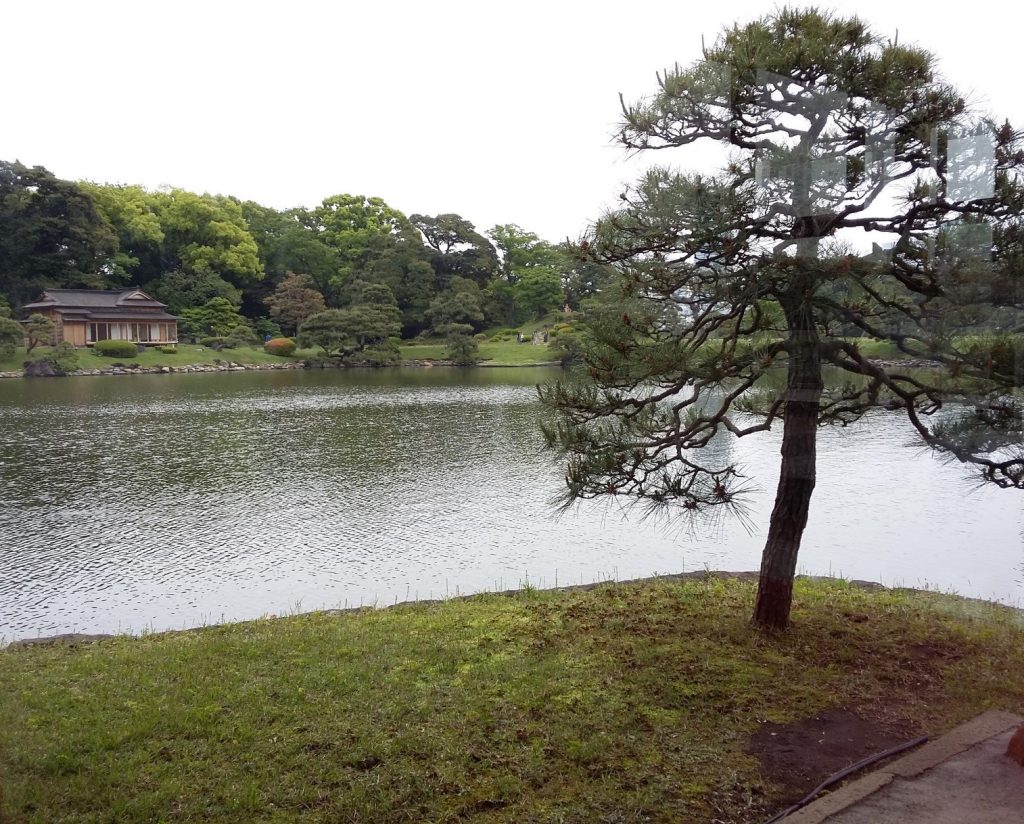 Tokyo_Hamarikyu_Lake_TeaVoyages