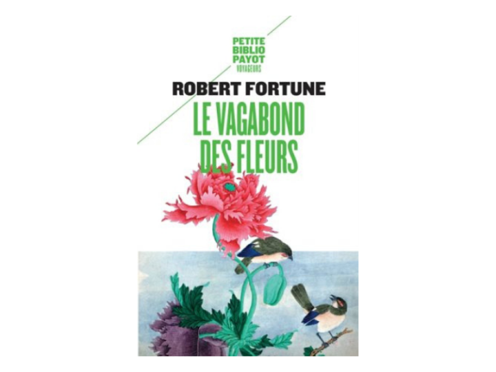 Le vagabond des fleurs & La route du thé et des fleurs, Robert Fortune