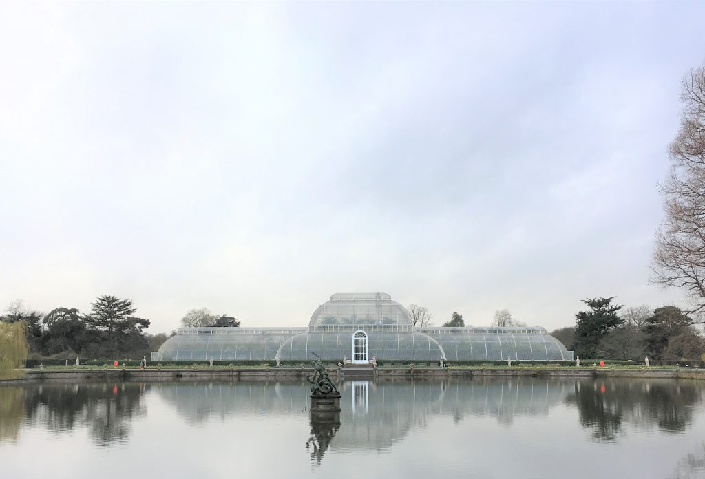 The_Botanical_Kew_Gardens_Palm_House_London_TeaVoyages